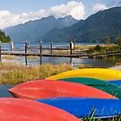 Colourful Canoes  by Tracy Riddell