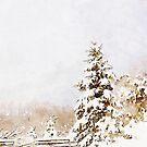 A Winter Sentinal by Douglas E.  Welch