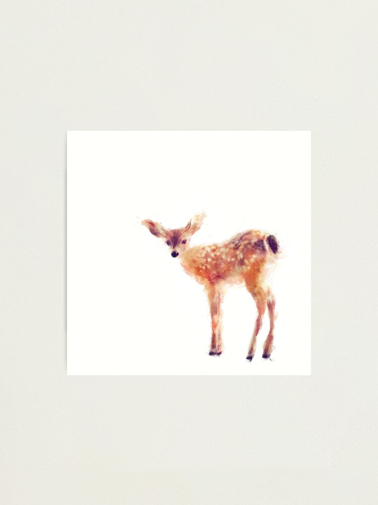 Alternate view of Fawn Photographic Print