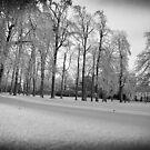 Frozen2 by KerrieLynnPhoto