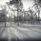 Frozen3 by KerrieLynnPhoto