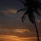 Sanibel Island Sunset by KerrieLynnPhoto
