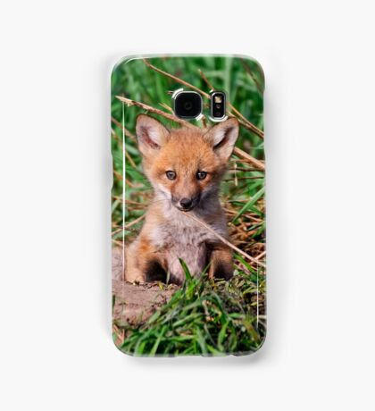 Who can resist this face - Ottawa, Ontario Samsung Galaxy Case/Skin