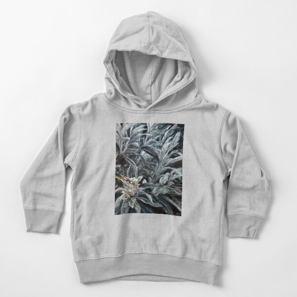 Honey Eaters by Avril Thomas Toddler Pullover Hoodie