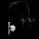 Solitude   by Brian Bo Mei