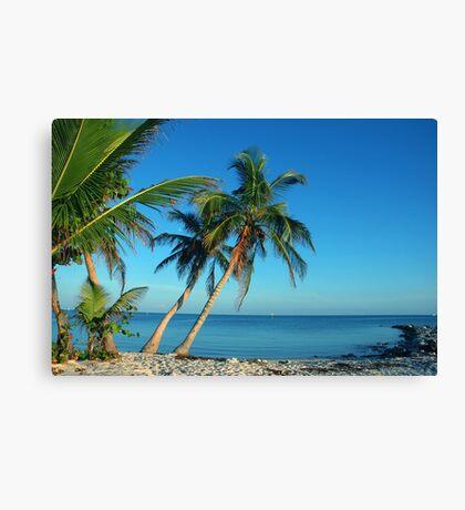 The Blue Lagoon, Key West, FL Canvas Print