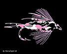 Pink Camo Fly Art by Marcia Rubin