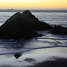 Walkers on the Beach. San Francisco 2010 by Igor Pozdnyakov