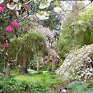 peeking in the gardens... by gaylene