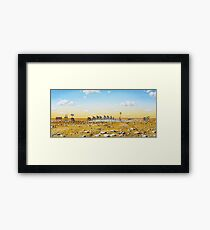 Tour De Outback Framed Print