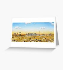 Tour De Outback Greeting Card