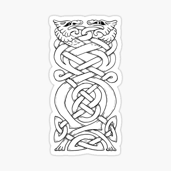 Twisted Celtic Dragons Sticker
