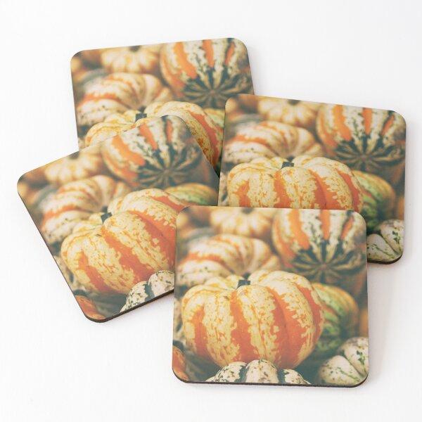 Fall Squash Harvest Coasters (Set of 4)