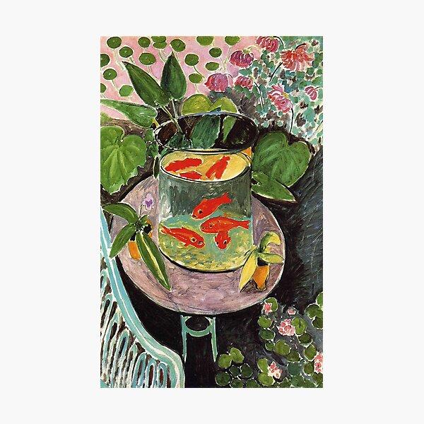 Henri Matisse Goldfish 1911, Goldfishes Artwork, Men, Women, Youth Photographic Print