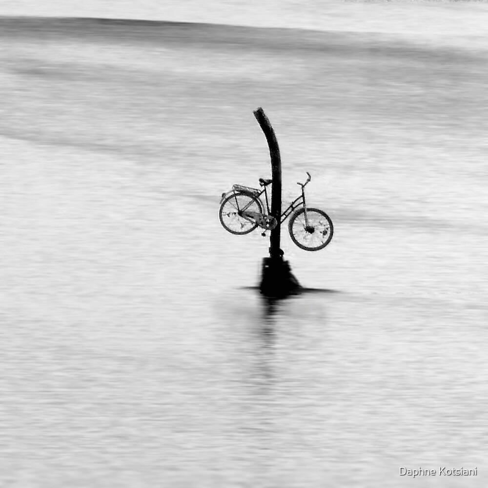 who took my bike? by Daphne Kotsiani