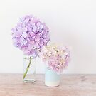 Pastel Hydrangeas in shades of purple by Zoe Power