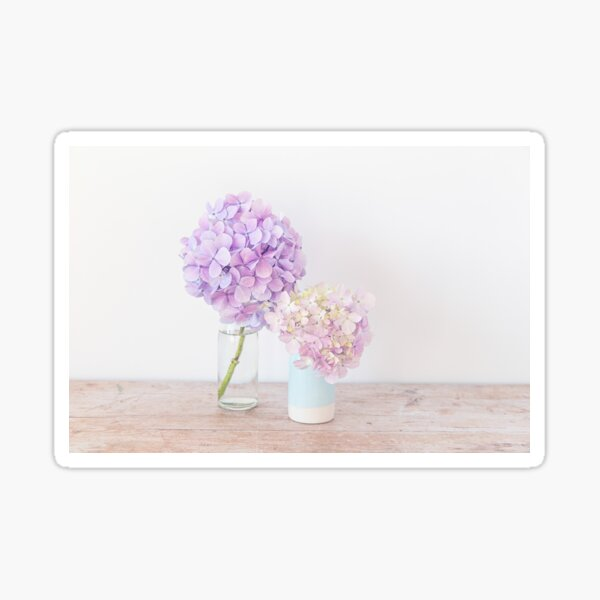 Pastel Hydrangeas in shades of purple Sticker