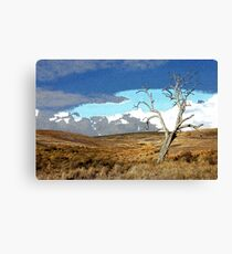 Distorted Reality Landscape Canvas Print