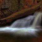 Delicate Cascade (in Autumn) by Aaron Campbell