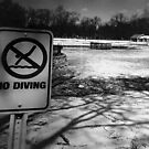 No Diving by clevercreature
