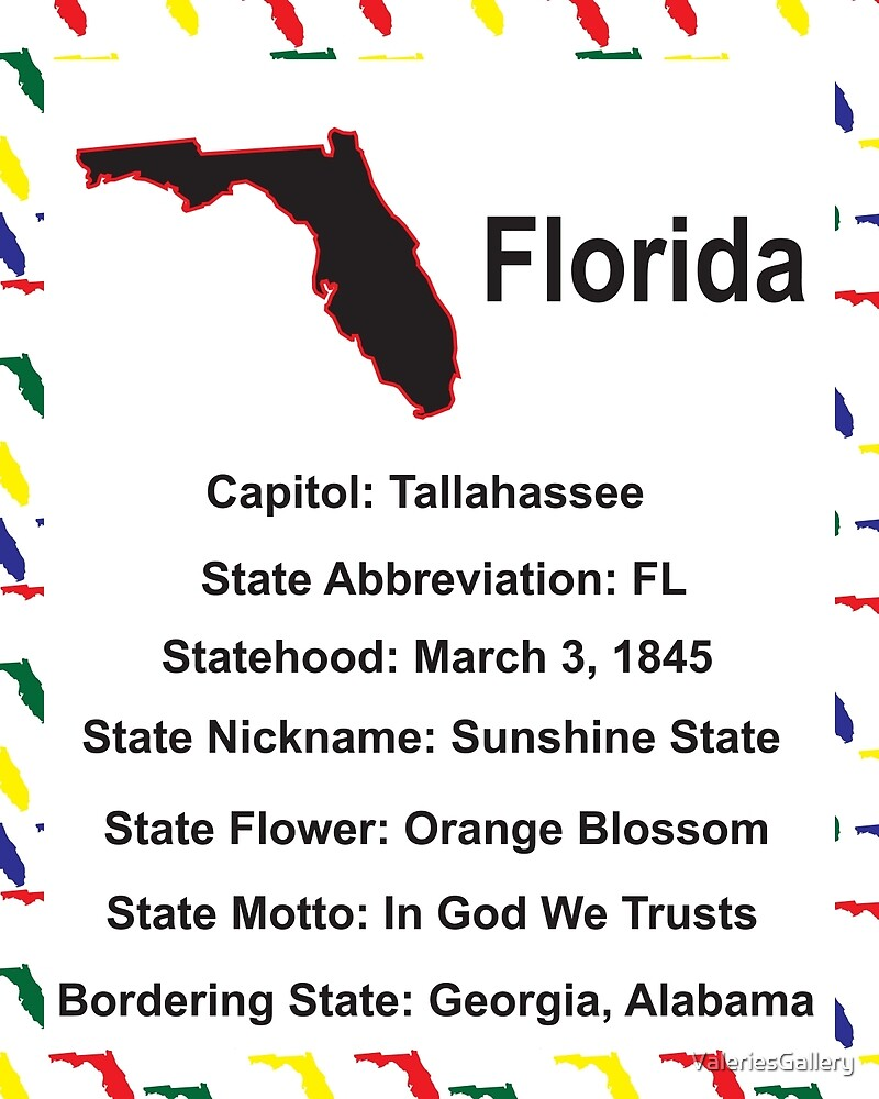 Florida Information Educational by ValeriesGallery