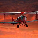 Two seater Tigermoth by John Wallace
