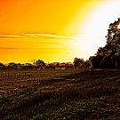 Autumn Sunrise by bryanbellars