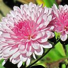Mums The Word by teresa731