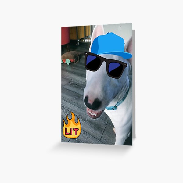 @PupperNelson: Lit Greeting Card