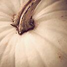 Pumpkin  by Fanboy30