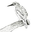 Oriental Dwarf Kingfisher In Ink by daphsam