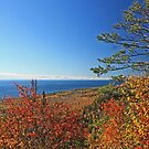 """""""Autumn View of Lake Superior"""" by MarieR"""