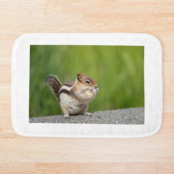Golden-mantled Squirrel Bath Mat