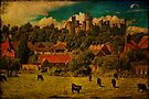 Arundel and Cows by Chris Lord