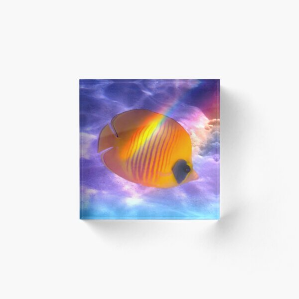 The Bluecheeked Butterflyfish Colorfully Acrylic Block