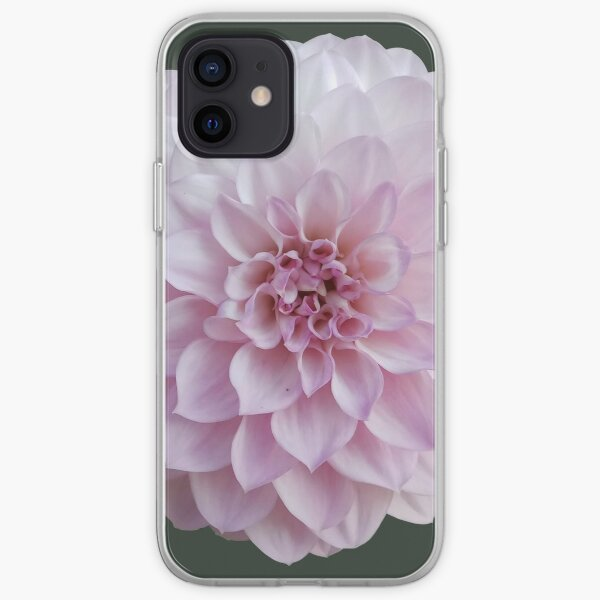 Dahlia rose Coque souple iPhone