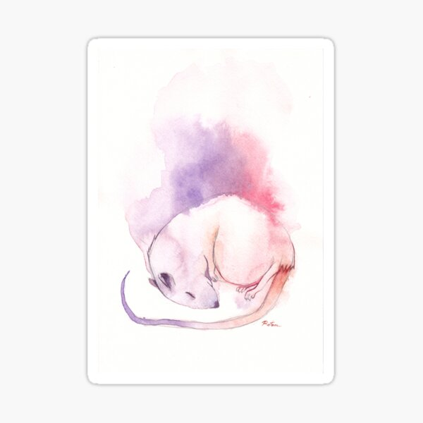 Rat Dream Sticker