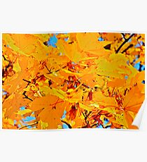 My Blueberry Nights . Brown Sugar Love Story (part.one.Autumn yellows). Poster