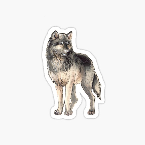 Wolf stickers Sticker