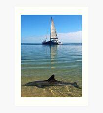 """Monkey Mia Magic"" Shark Bay, Western Australia Art Print"