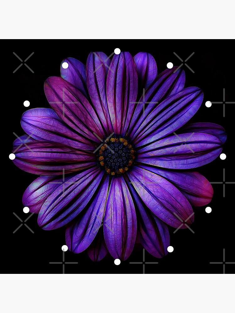 Big Purple Flower Pretty Floral by ImageMonkey