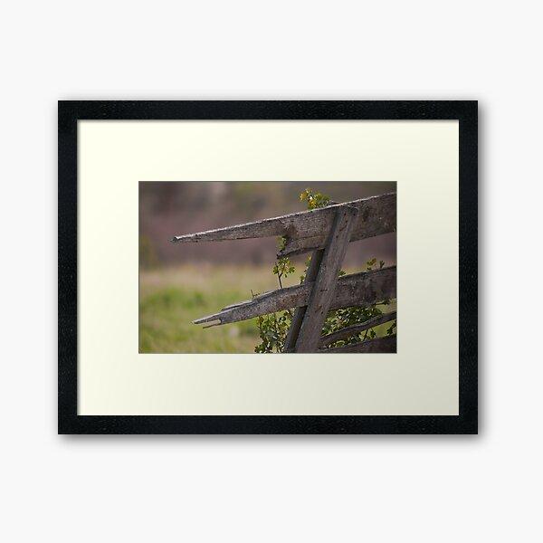 Broken Fence 2 Framed Art Print