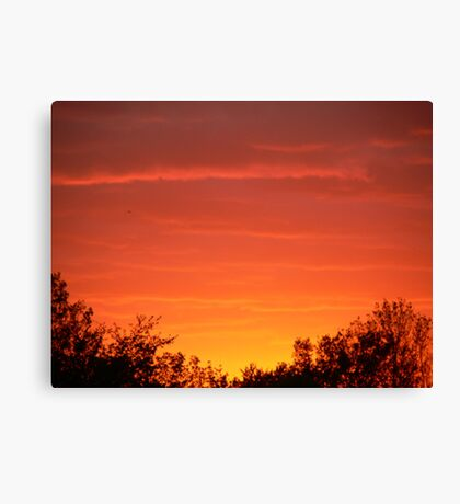 sunset by the woods Canvas Print