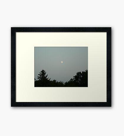 moon over trees Framed Print