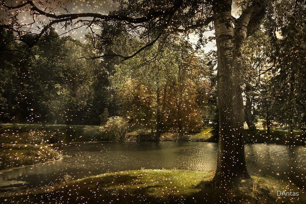 Mystic by Danuta Antas