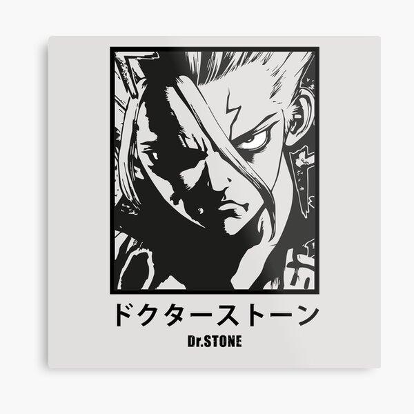 Dr Stone - Anime Impression métallique