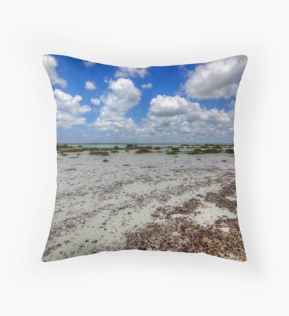 Cozumel, Mexico - Lonely Beach Throw Pillow