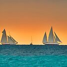 Regattas in Cannes by southmind