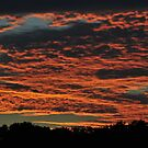 Texas Sunset by Rena Neal