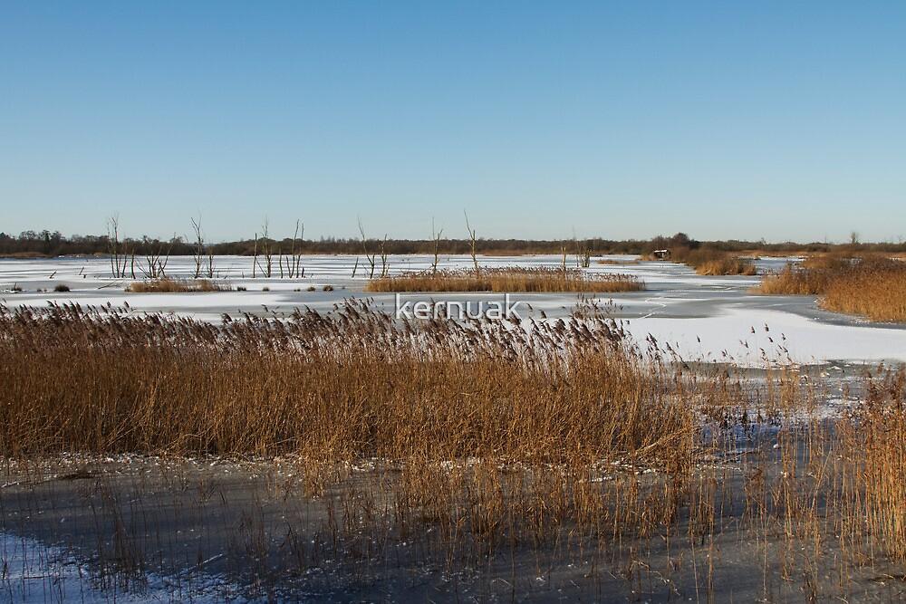 Noah's Lake in Winter by kernuak